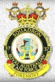 No 37 Squadron, Royal Australian Air Force.jpg