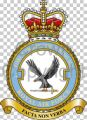 No 2 Force Protection Wing, Royal Air Force.jpg
