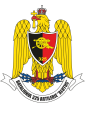 325th Artillery Battalion Alutus, Romanian Army.png