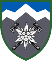 10th Mountain Assault Brigade, Ukrainian Army1.png