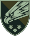 25th Airborne Brigade, Ukrainian Army1.png