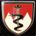 Medical Battalion 12, Germany.png