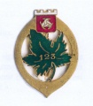 123rd Infantry Regiment, French Army.jpg
