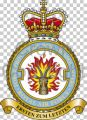 No 1 Force Protection Wing, Royal Air Force.jpg