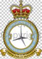 No 5 Force Protection Wing, Royal Air Force.jpg