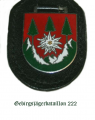 Mountain Jaeger Battalion 222, German Army.png